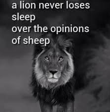 Quotes about Opinions Pictures