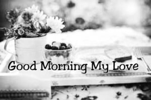 Good Morning My Love Picture Quotes