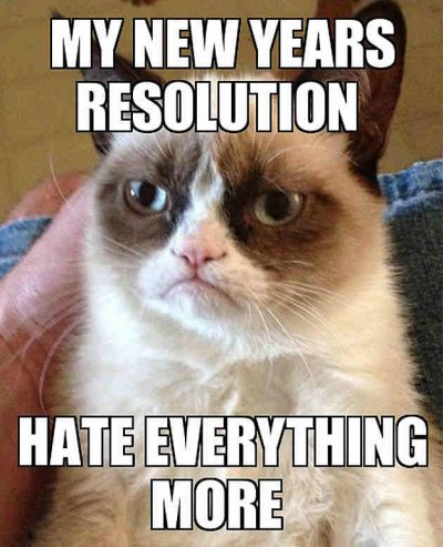 Cat Memes for New Year Resolutions