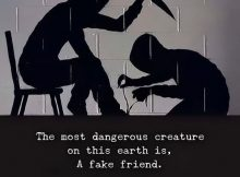 Fake Friends Sayings