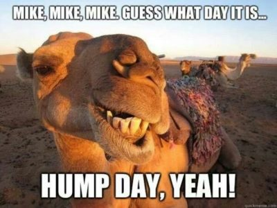 Guess What day it is hump day meme