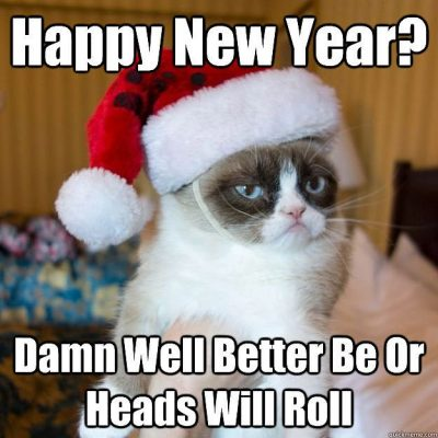New Year Memes on Cat