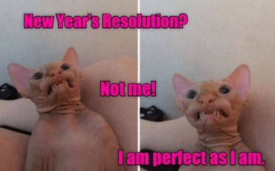 New Year's Resolution Funny
