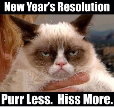 New Year's Resolution Meme Images