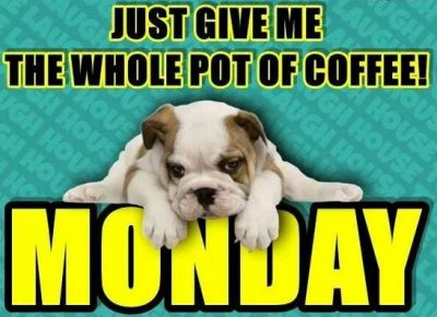 Dog Memes On Monday Coffee