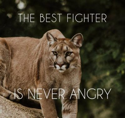 Don't Be Angry But A Fighter Quotes