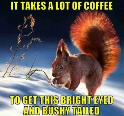 Hilarious Wednesday Coffee Meme