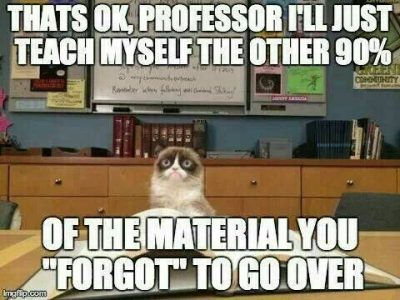 Nursing School Cat Meme