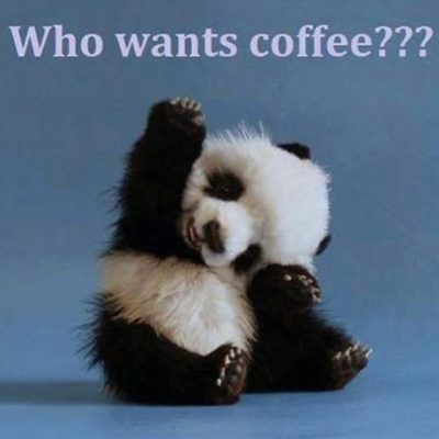 Panda Wednesday Coffee Meme