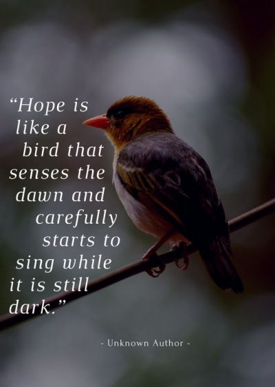 Sayings On Hope For The Future