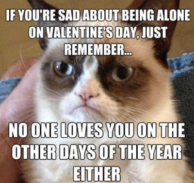 Valentine Day's Cat Meme