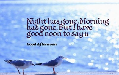 Good Noon Quotes