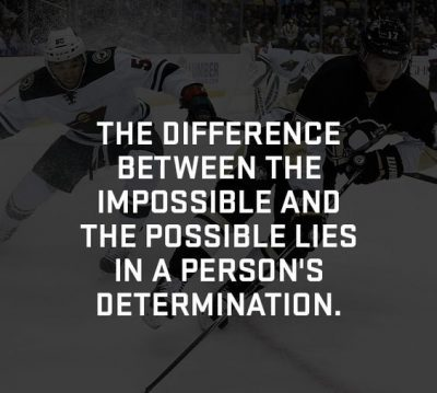 Quotes On Will & Determination