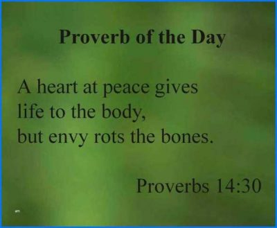Proverbs On Envy