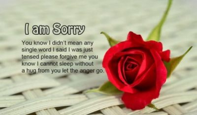 Heart Touching Sorry Message