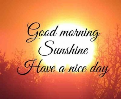 Have A Nice Day Wishes