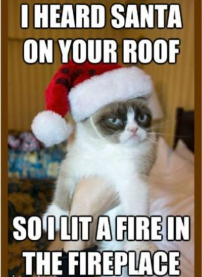 200 Funny Merry Christmas Memes, Images