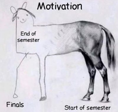 Memes For Students For Finals