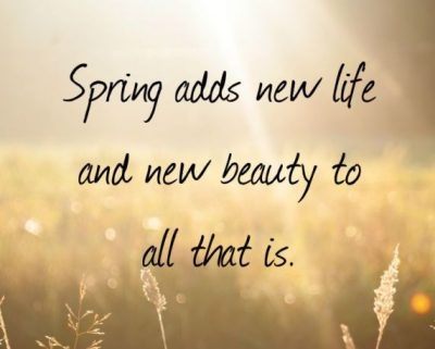 Picture Quote On Spring And New Beginning