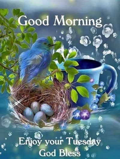Beautiful Tuesday Blessing Pic