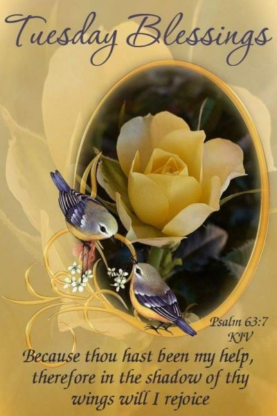 Blessed Tuesday Blessings