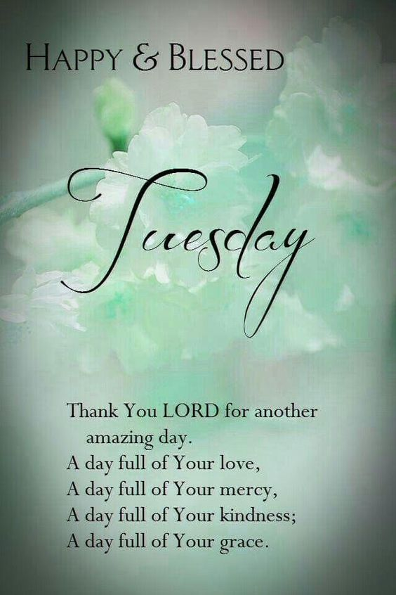 180 Tuesday Blessings Images Photos Quotes Gif Pics