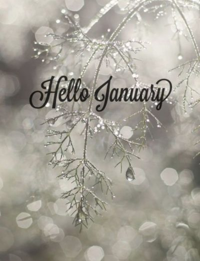 Hello January 2020 Pictures