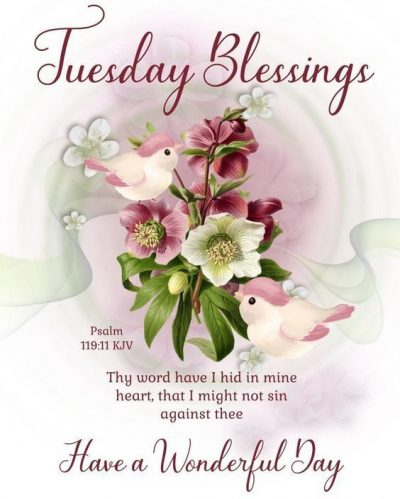 Tuesday Blessings KJV