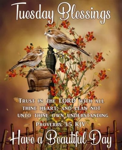 Tuesday Blessings Wallpapers