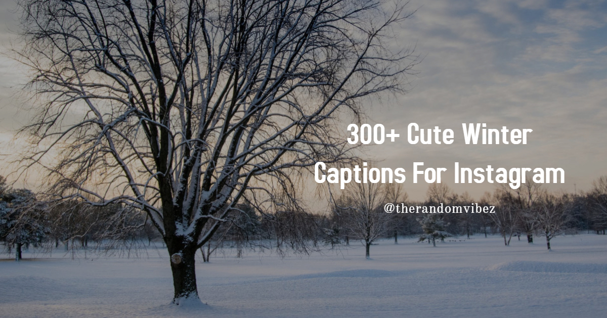 300 Cute Winter Captions For Instagram The Random Vibez It occurs after autumn and before spring in each year. 300 cute winter captions for instagram