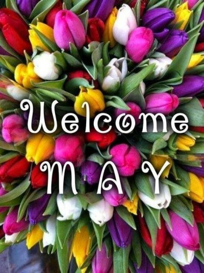 Hello May Floral Pic