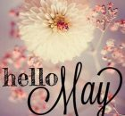 Hello May Flower Pics