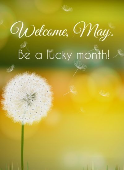 Welcome May Background Pic