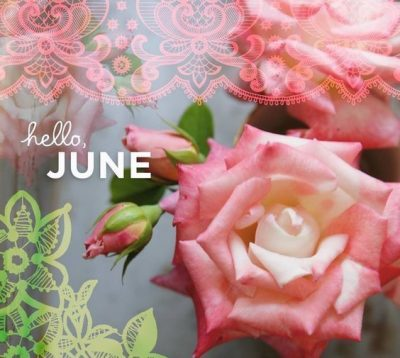 Hello June Floral Pic
