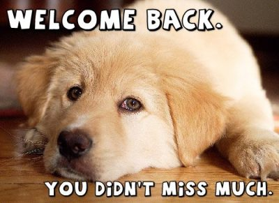 Cute Welcome Back Quotes Images