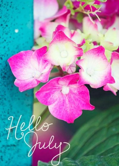 Hello July Floral Pic