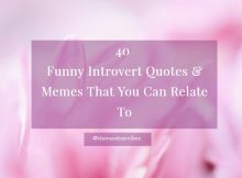 Funny Introvert Quotes and Sayings