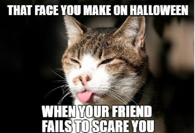 Happy Halloween Cat Pictures