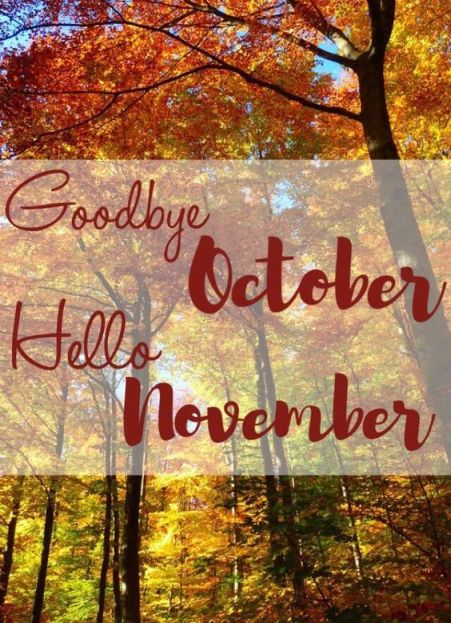 60 Hello November Images Pictures Quotes And Pics 2020