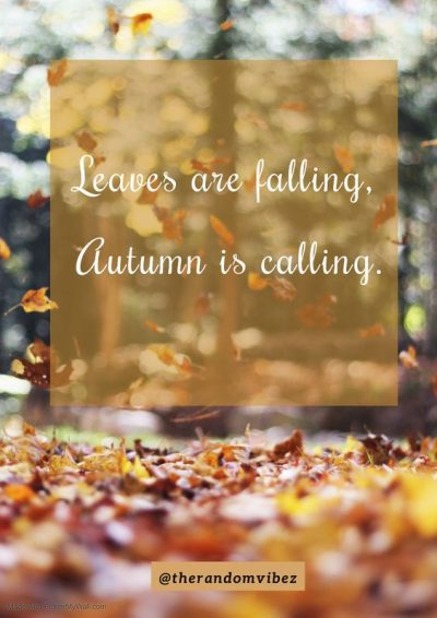 Autumn Quotes for Kids