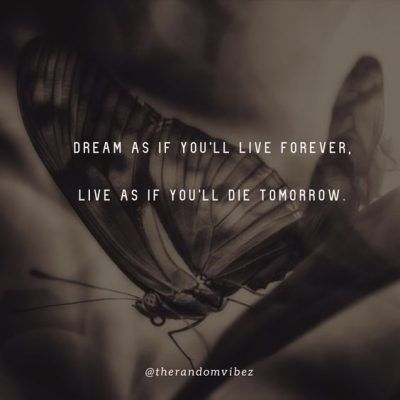 Inspirational If I Die Tomorrow Quotes