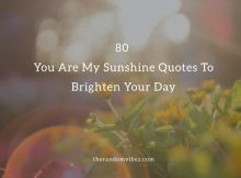 80 You Are My Sunshine Quotes