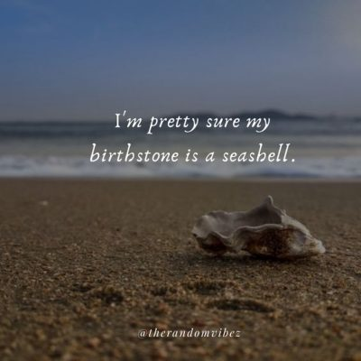 Seashell Love Quotes