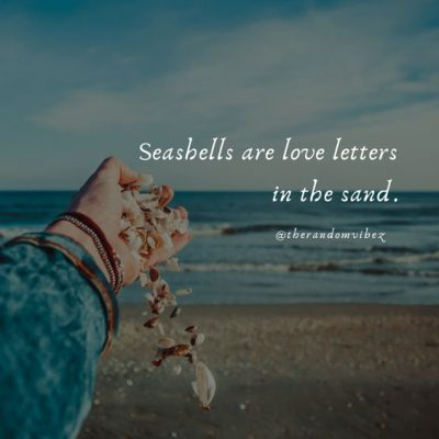 Seashell Quotes Images