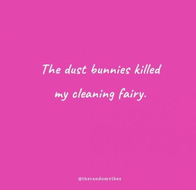 Funny Quotes About Cleaning
