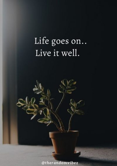 Life Goes On Quotes Images