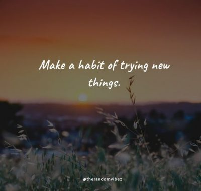 Try Something New Quotes